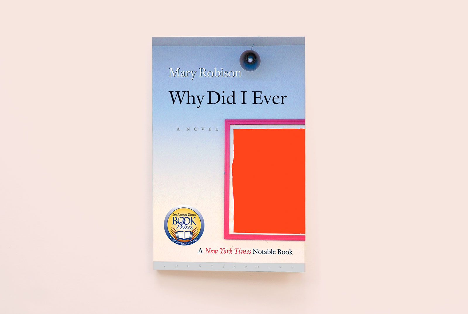 THIS IS MY LIFE: MARY ROBISON'S WHY DID I EVER